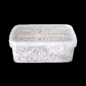 Magic Mushroom Grow Kit Colombia XP by FreshMushrooms®